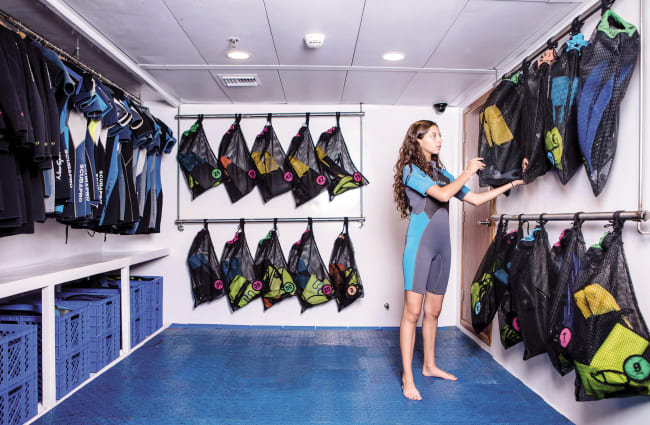 A woman in the room with snorkelling equipment