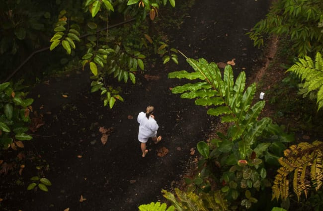 Man walking through the forest