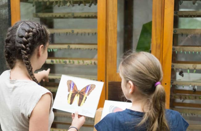 two girls looking at a butterfly image