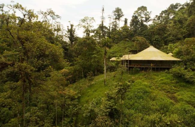 Hut in a greenery