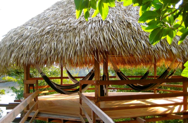 Hammocks in the bower with palm leaf roof