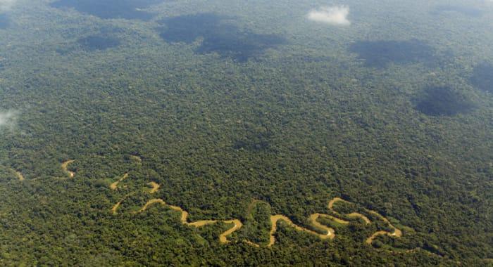 Amazon River Oxbow Bending