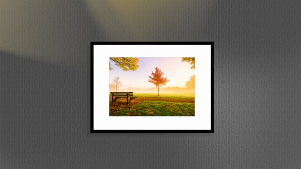 MY PARK - With sample frame | Direct Order : Item #1354