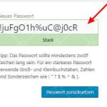 Wordpress Passwort Reset Screen