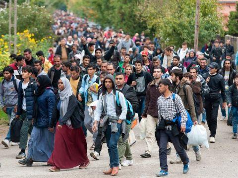 A migrációban fontos szerepet játszik az éghajlatváltozás - ClimeNews - Hírportál