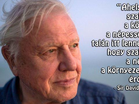 Ma lett 93 éves Sir David Attenborough   ClimeNews - Hírportál