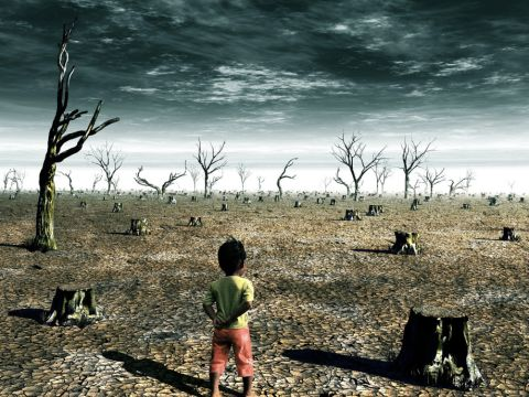 A magyarok a legjobbak a világon ökológiai fenntarthatóságban! | ClimeNews