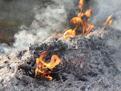 A helytelen lakossági tüzelés felel a légszennyezés nagyjáért | ClimeNews