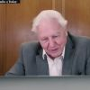 Akit korábban Attenborough dokumentumfilmjei inspiráltak | ClimeNews