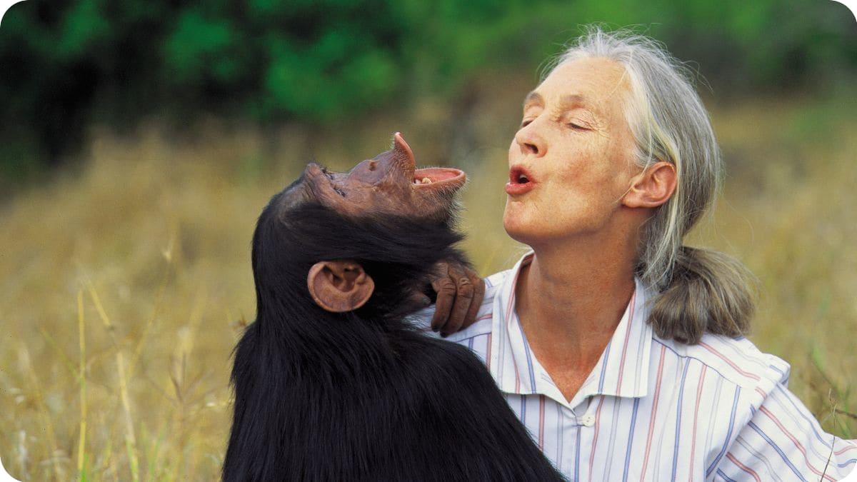 Jane Goodall - gondolatok | ClimeNews - Hírportál
