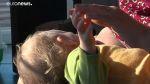 Mérgező anyagok az anyatejben | ClimeNews - Hírportál