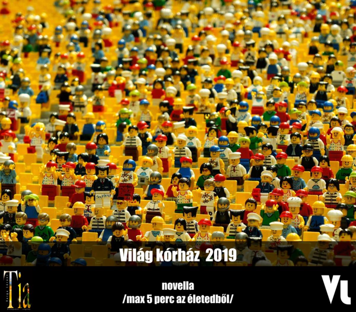 Varga Lóránt - Világ kórház 2019 | ClimeNews - Hírportál