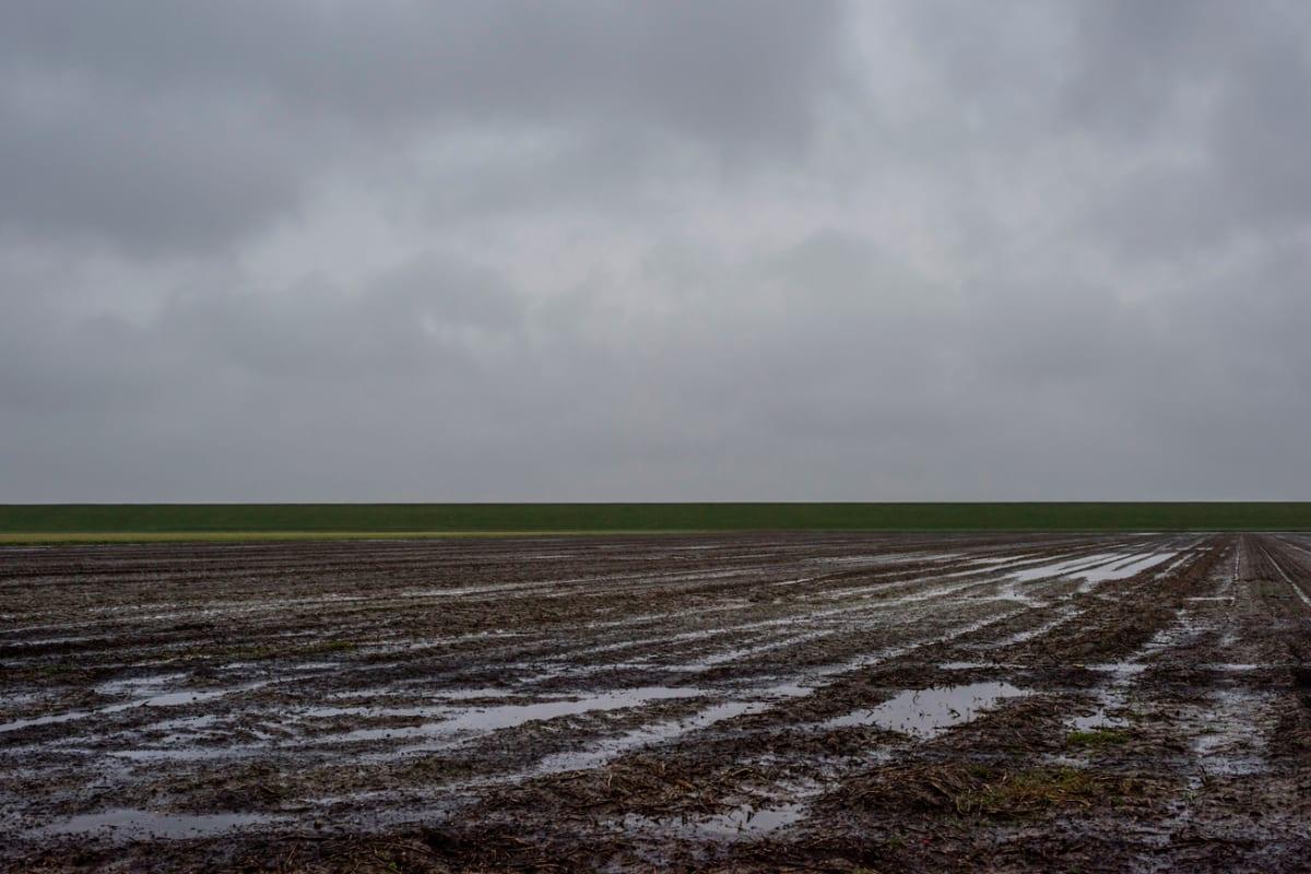 Aggasztó jelenség hat Magyarország időjárására   ClimeNews - Hírportál   Fotó: Getty Images