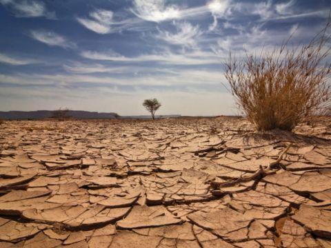 Nem egységesek az elsivatagosodás ellen folytatott uniós küzdelem intézkedései   ClimeNews