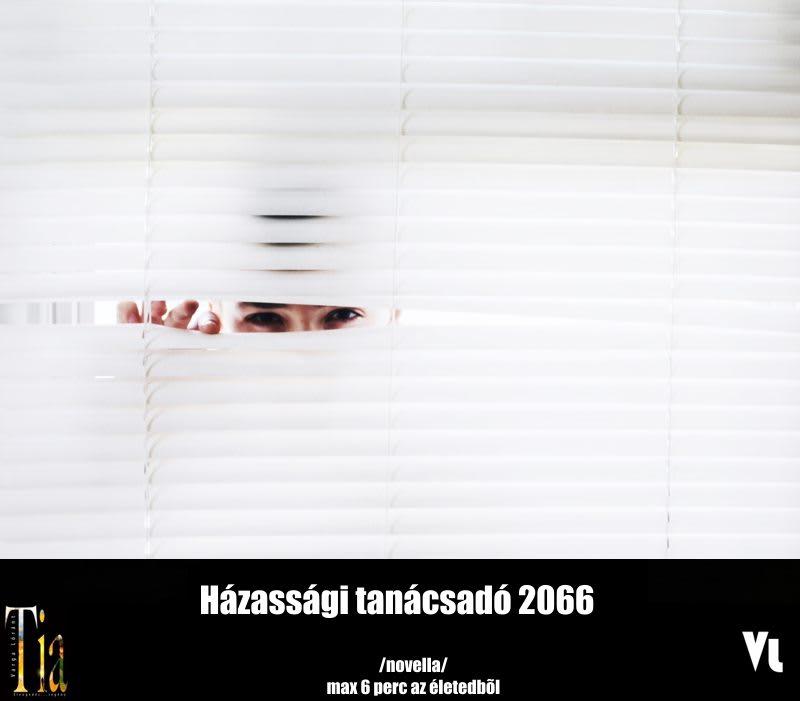 Varga Lóránt – Házassági tanácsadó 2066