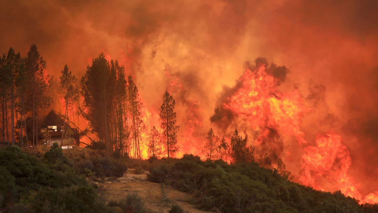 A mostani erdőtüzek a klímaváltozás bizonyítékai