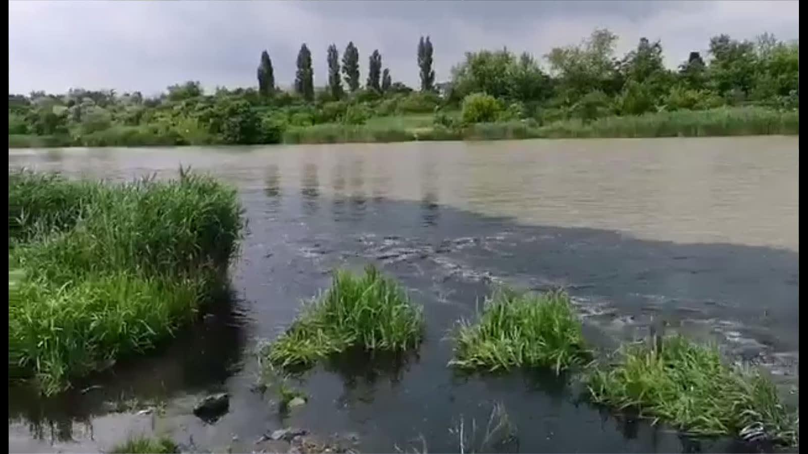 Ismét ömlik a szar a Ráckevei (Soroksári) Duna-ágba