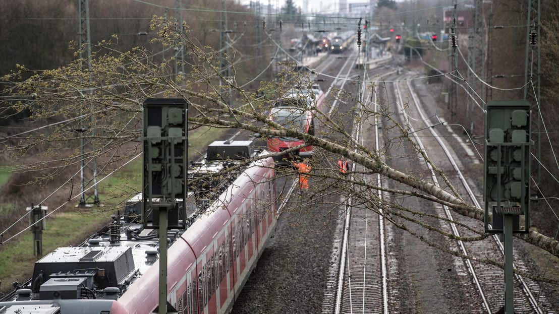 ClimeNews | Fotó:Vasúti szerelvényre dőlt fa, a németországi Dormagenben 2019. március 11-én. Fotó: Federico Gambarini / AFP
