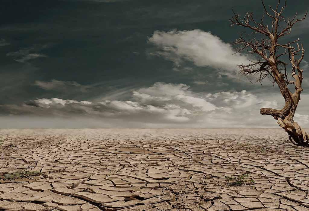 A bűntudat nem elég a Föld megmentéséhez