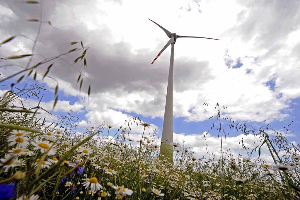 Visszadobta Áder a szélerőműveket tiltó törvényt