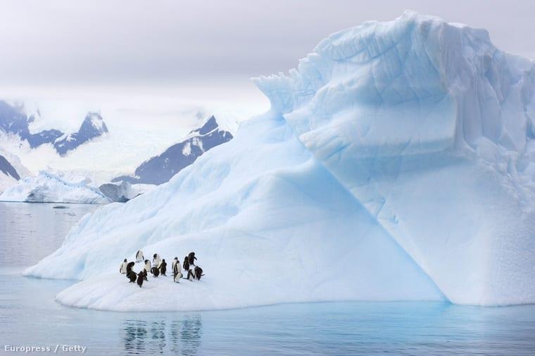 Fotó: Barcroft Media | Orosz rulett a természet ellen | ClimeNews - Hírportál