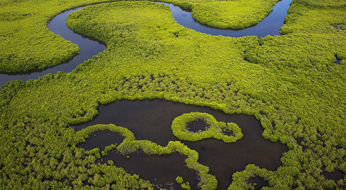 Kiegyenlítés (carbon offset) | Elkötelezettek vagyunk a fenntarthatóság érdekében