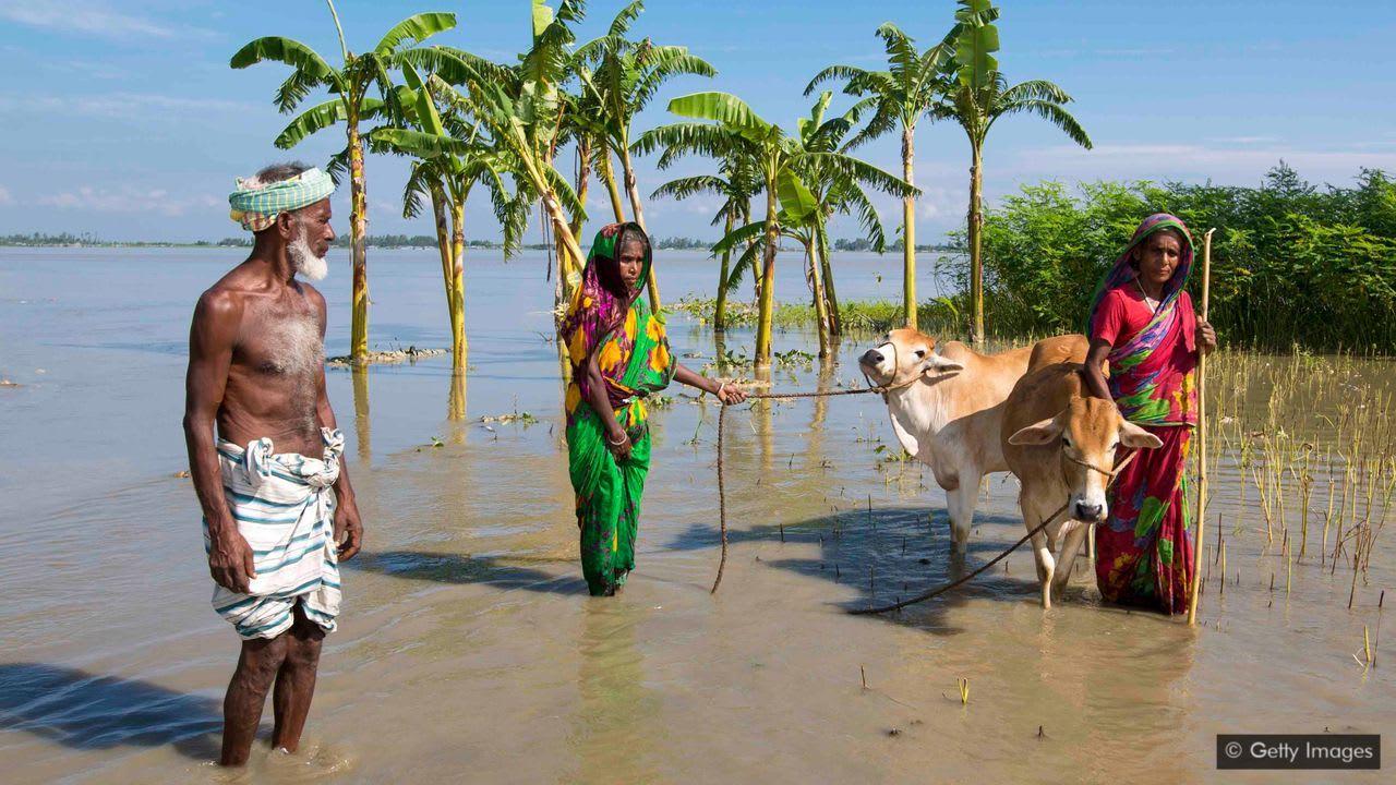 A törvény, ami illegálissá teheti a klímaváltozást | ClimeNews - Hírportál