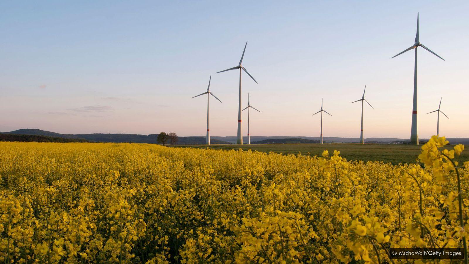 A karbonsemlegesítés ismert kibocsátás eltávolító technológia | ClimeNews