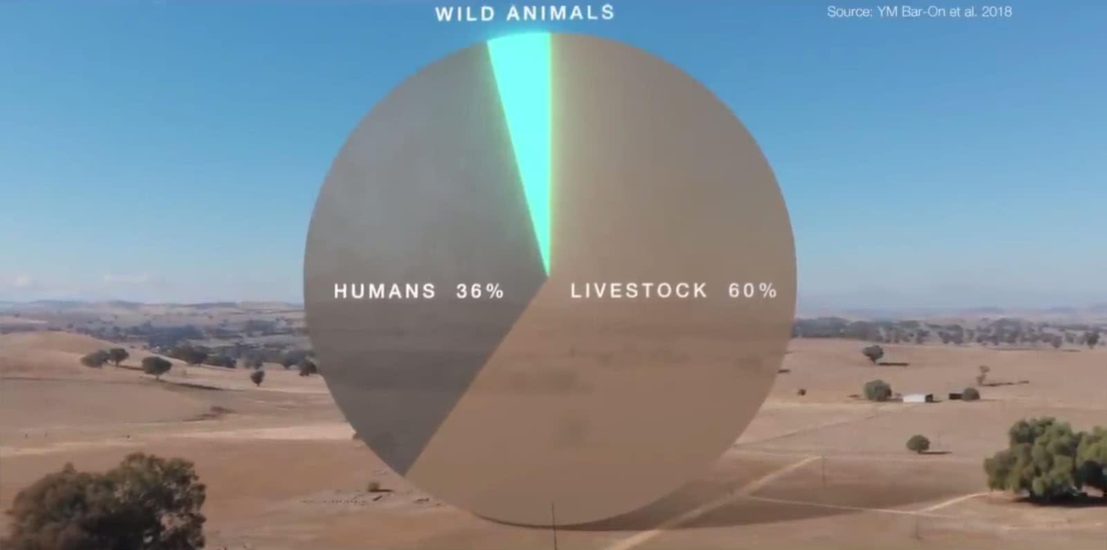 Kihalás - A Tények | David Attenborough - BBC | ClimeNews Hírportál