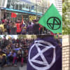 Világszerte környezetükért aggódó aktivisták és civilek tömege tüntet | ClimeNews