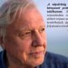 David Attenborough - Hány ember élhet a Földön? - ClimeNews - Hírportál
