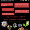 A kerti zöldhulladék veszélyes a természetes élőhelyekre nézve! | ClimeNews