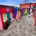Az év környezetvédelmi fotósa | ClimeNews - Hírportál