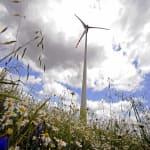 Visszadobta Áder a szélerőműveket tiltó törvényt - ClimeNews