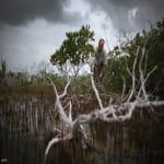 Pusztuló erdő - Fotó: Joe Raedle
