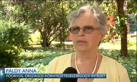 Páldy Anna - A klímaváltozás a turizmusra is hatással van - ClimeNews