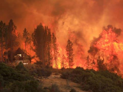 A mostani erdőtüzek a klímaváltozás bizonyítékai - ClimeNews - Hírportál