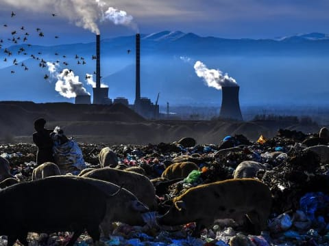 A környezetszennyezés a legsúlyosabb kérdés a magyarok szerint | ClimeNews | @ Copyright : MTI/EPA/Georgi Licovszki