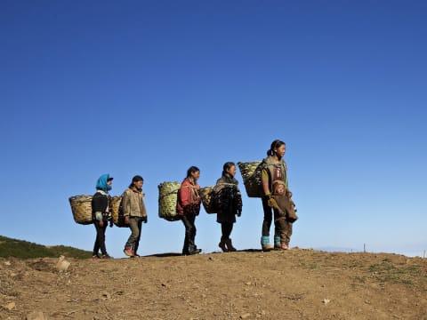 Németország a jövőben nem ad menedékjogot a területére érkező klímamenekülteknek