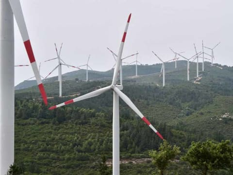 Egyre vonzóbbak a zöld befektetések | Forrás: AFP/Giuseppe Cacace