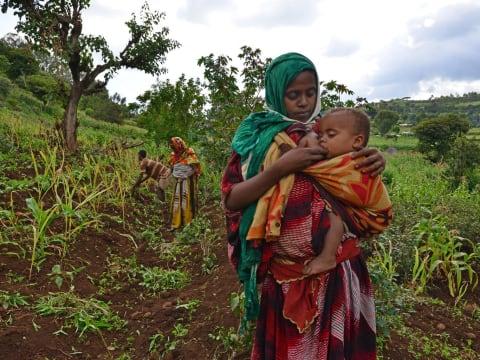Kik a felelősek az éhezésért? | ClimeNews - Hírportál