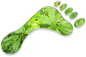 100% karbonsemlegesen folytatjuk működésünket | ClimeNews