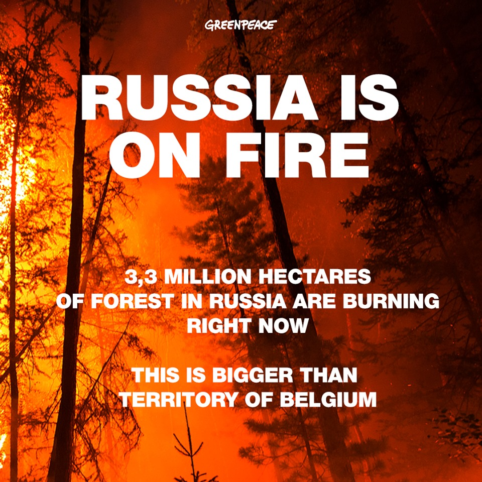 Európát befedő szén-dixoid tömeg szabadult fel a sarkköri erdőtüzek miatt (frissítve)