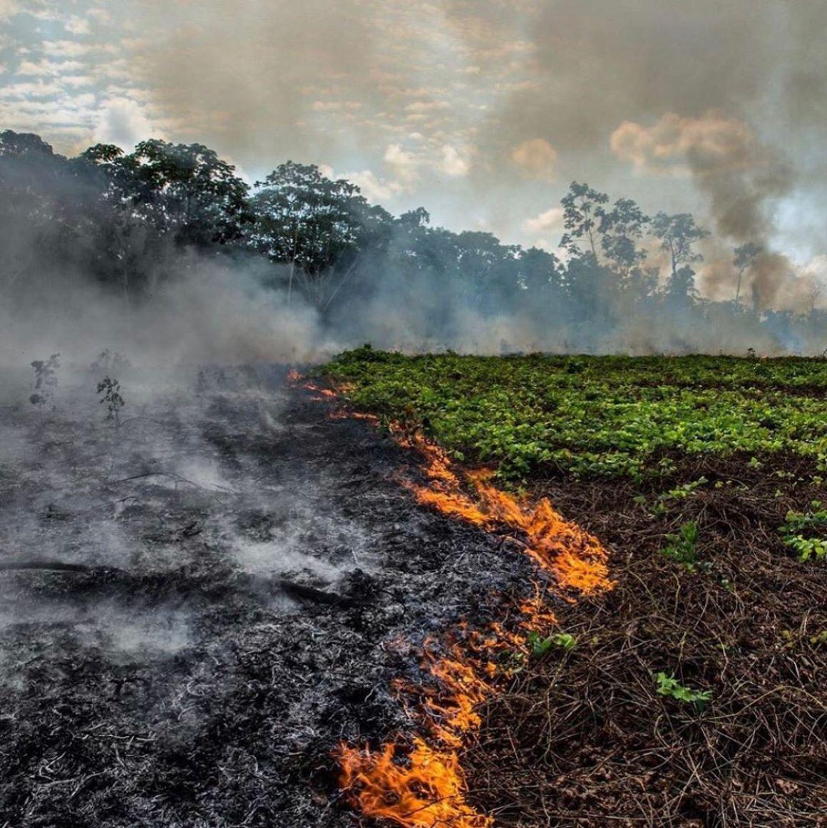 Lángokban áll a Föld | ClimeNews - Hírportál