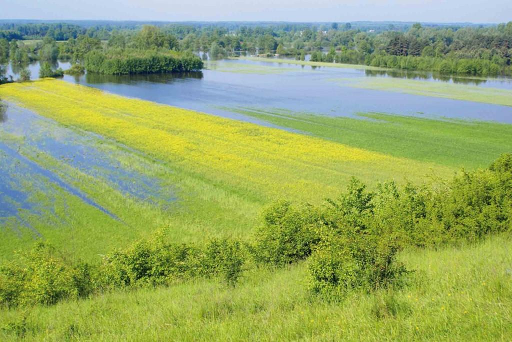 Az agrártárca csatlakozott a klímavédelmi kampányhoz | ClimeNews