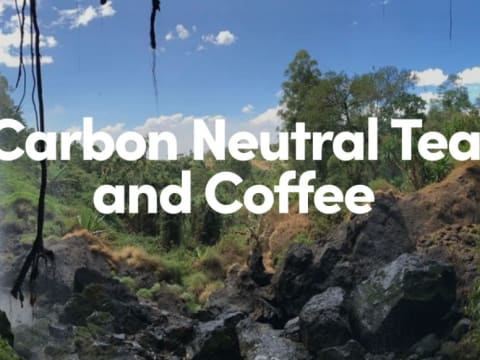 Karbonsemleges tea és kávé | ClimeNews - Hírportál