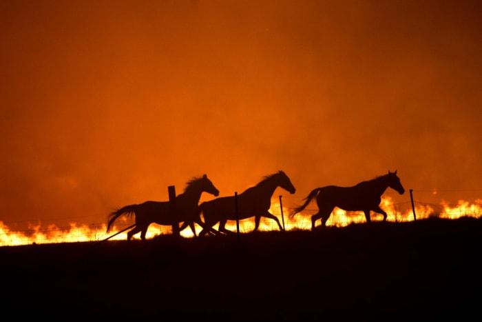A klímavészhelyzet 2020. évi áttekintése | ClimeNews - Hírportál