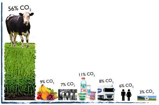 A szén-dioxid adó sikere