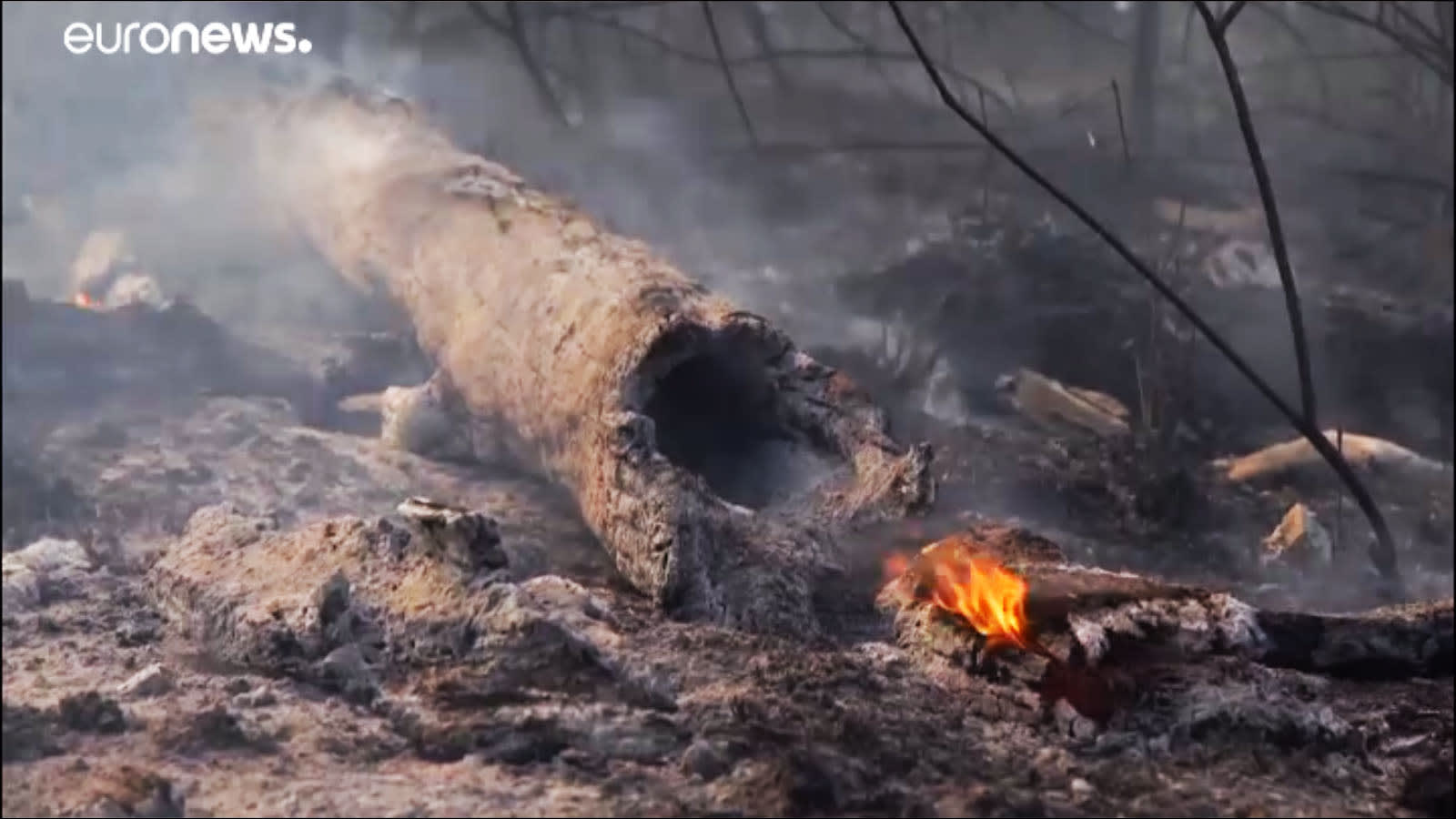 Soha nem látott mértékben pusztul az Amazonas
