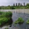 Ismét ömlik a szar a Ráckevei (Soroksári) Duna-ágba | ClimeNews